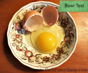 Cracked Egg in Bowl