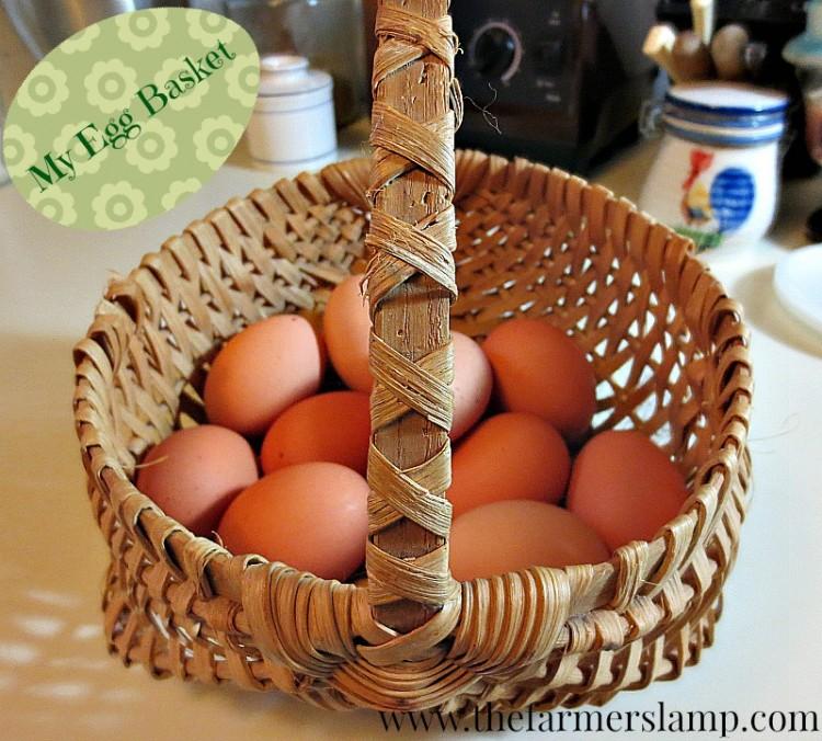 egg washing and storage