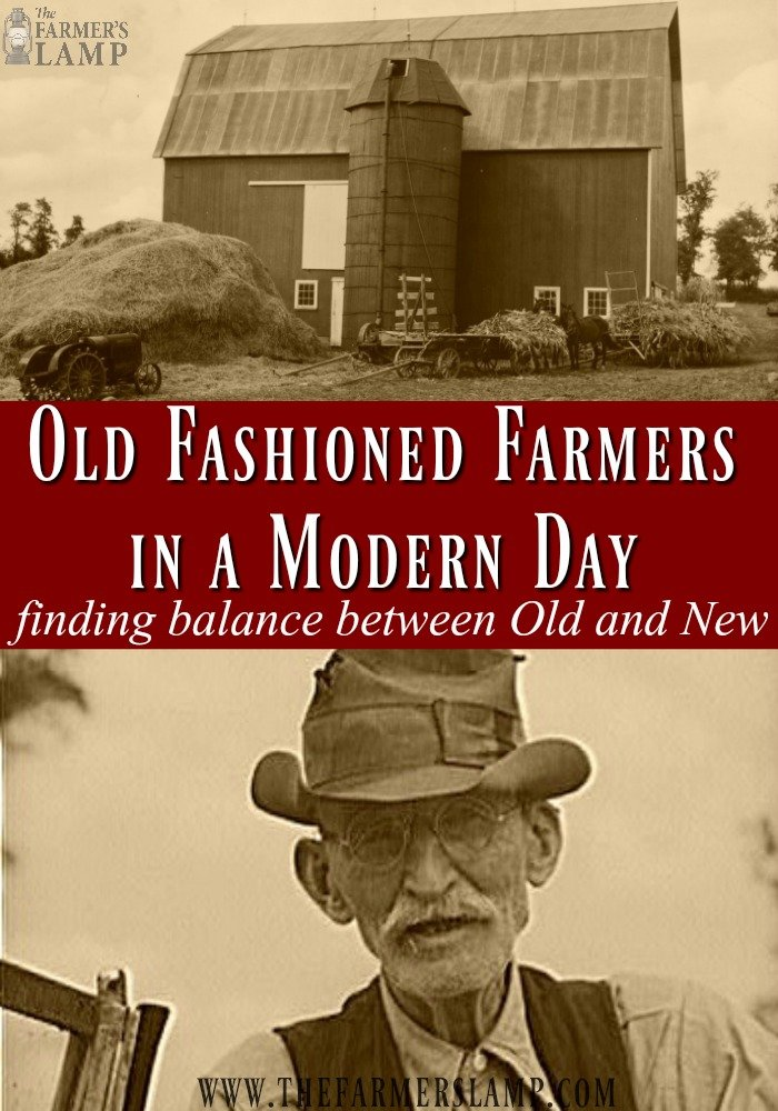 farming-modern-farm-homestead-homesteading