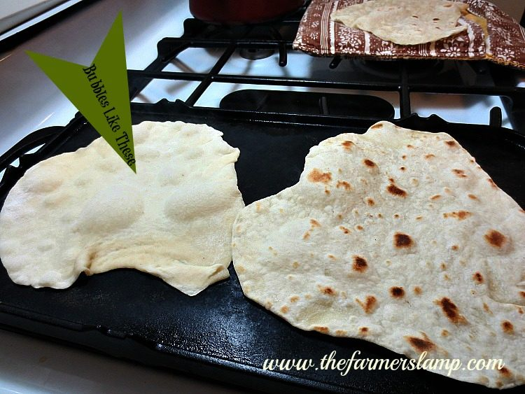 Tortillas on Griddle