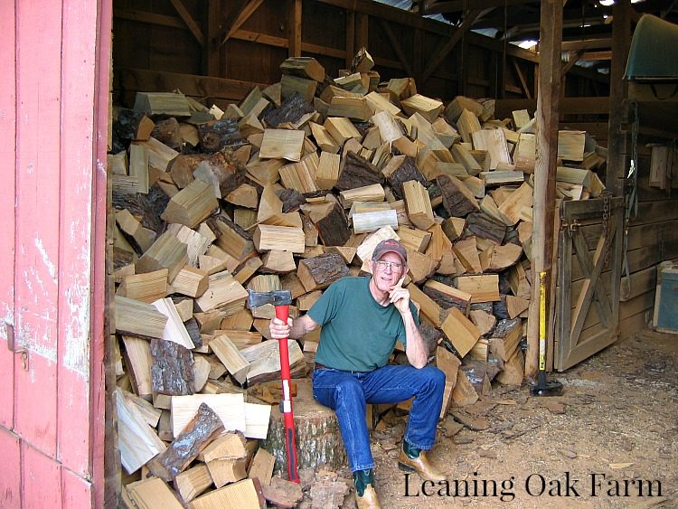 Allen with his wood pile