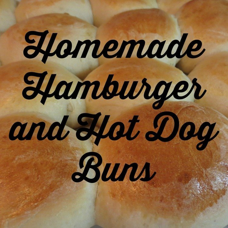 Homemade Hamburger and Hot Dog Buns