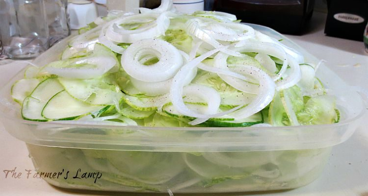 Layered Pickle Slices