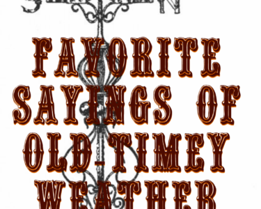 Favorite Sayings of Old-Timey Weather Prediction