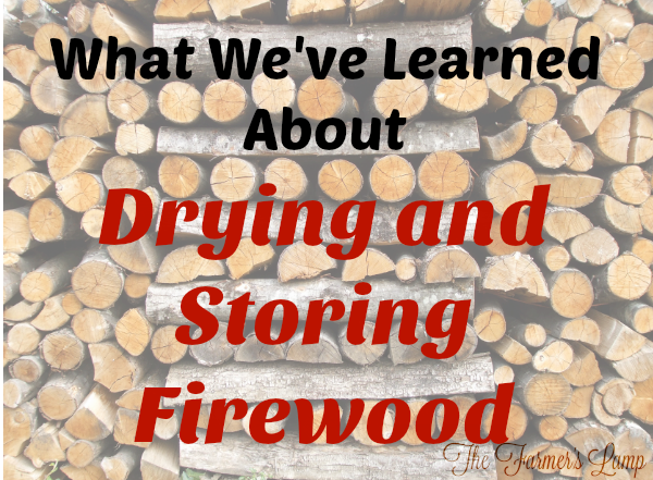 drying-and-storing-firewood
