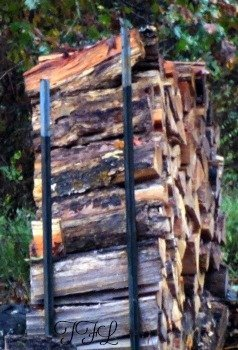 drying-and-storing firewood