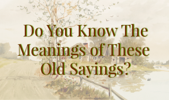 Do You Know The Meanings Of These Old Sayings The Farmers Lamp
