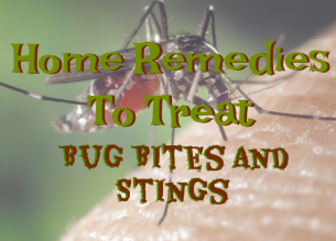 bug bites and stings