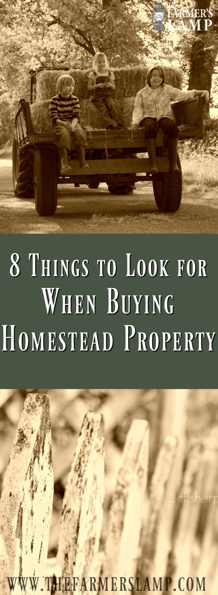 8 Things to Look for When Buying Homestead Property