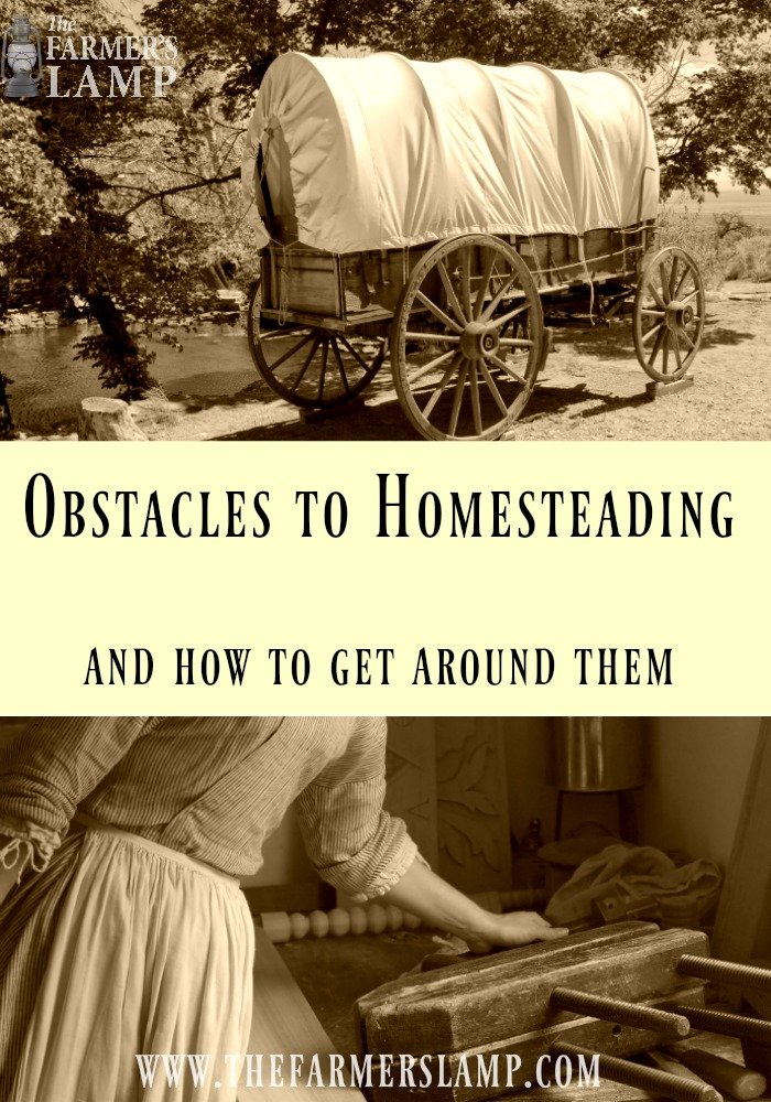 homesteading-obsticles